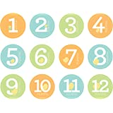 Pearhead Neutral Baby Milestone Belly Stickers, Multicolour, Small, 12 12 count