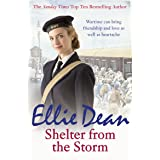 Shelter from the Storm (The Cliffehaven Series Book 11)
