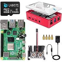 LABISTS Raspberry Pi 4 8GB(技適マーク入)MicroSDHCカード32G/Raspbianシス…