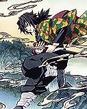 鬼滅の刃 2(完全生産限定版) [Blu-ray]