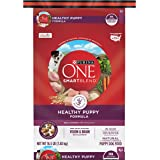 Purina ONE Natural Dry Puppy Food, SmartBlend Healthy Puppy Formula - 16.5 lb. Bag