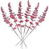 [Amazonブランド] Umi.(ウミ) 花の花束の目玉に結婚式の家の装飾のための個々の茎を持つ6個の人工ユーカリの葉 (レッド)