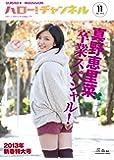 ハロー! チャンネル vol.11 2013年新春特大号~真野恵里菜卒業スペシャル! ~ 62484-71 (カドカワム…
