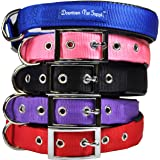 Downtown Pet Supply Deluxe Adjustable Thick Comfort Padded Dog Collar, Small, Blue