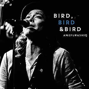 BIRD BIRD & BIRD