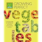 Square Foot Gardening: Growing Perfect Vegetables: A Visual Guide to Raising and Harvesting Prime Garden Produce (All New Squ