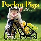 2020 Pocket Pigs Wall Calendar