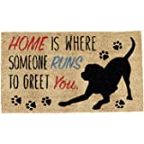 DII Natural Coir Fiber, 18x30 Entry Way Outdoor Door Mat with Non Slip Backing - Home Dog