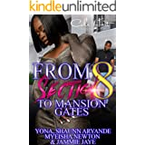 From Section 8 To Mansion Gates: An Urban Romance: Standalone