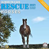 Bright Day Calendars 2021 Rescue Horses Wall Calendar by Bright Day, 12 x 12 Inch, Cute Farm Animals Calendars for a Cause