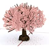 Lovepop Cherry Blossom Pop Up Card - Valentines Day Card, 3D Card, Lovepop Cards, Greeting Card, Birthday Card, Popup Greetin