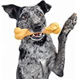 Pet Qwerks Zombie BarkBone, Cheddar Cheese Flavor - Nylon Chew Toy for Aggressive Chewers, Tough Durable Extreme Power Chewer