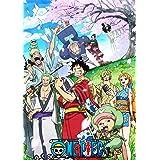 ONE PIECE ワンピース 20THシーズン ワノ国編 piece.24 DVD