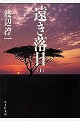 遠き落日 上 (集英社文庫) Kindle版