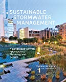 Sustainable Stormwater Management: A Landscape-Driven Approa…