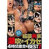 媚薬拘束潮吹きイカセ 4時間激責めBEST2 / REAL(レアル) [DVD]