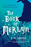 The Book of Merlyn: The Conclusion to the Once and Future Ki…