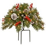 National Tree 18 Inch Frosted Berry Urn Filler with Cones, Red Berries, Tripod Stake and 35 Warm White Battery Operated LED L