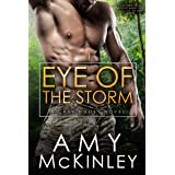 Eye of the Storm (A Gray Ghost Novel Book 2)