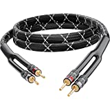 GearIT 12AWG Premium Heavy Duty Braided Speaker Wire (6 Feet) with Dual Gold Plated Banana Plug Tips - Oxygen-Free Copper (OF