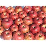 【訳あり・ジュース用】 岩手県産 または 青森県産 りんご 10kg (ジュース用・果肉柔らかめ)