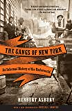 The Gangs of New York: An Informal History of the Underworld…