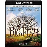 ビッグ・フィッシュ 4K ULTRA HD & ブルーレイセット [4K ULTRA HD + Blu-ray]