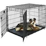 Large Dog Crate | Midwest Life Stages Double Door Folding Metal Dog Crate | Divider Panel, Floor Protecting Feet, Leak-Proof