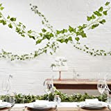 Ginger Ray 5 Pack of Artificial Fake Hanging Vines Plant Leaves Garland for Wedding Decorations - Beautiful Botanics