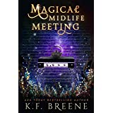 Magical Midlife Meeting: A Paranormal Women's Fiction Novel (Leveling Up Book 5)
