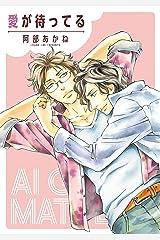 愛が待ってる 奪われることまるごと全部 (ディアプラス・コミックス) Kindle版