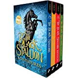 The Black Stallion Adventures 4 Volume Boxed Set