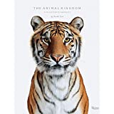 Animal Kingdom: A Collection on Portraits