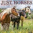 Just Horses 2021 Wall Calendar