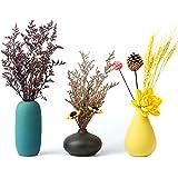Tuumee Small Ceramic Vase Decorative, Set of 3 Flower Bud Vases