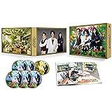 インハンド DVD-BOX