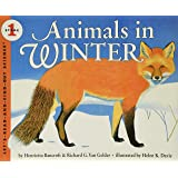 Animals in Winter: 1