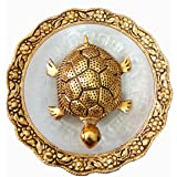 White Metal with Golden Polish Feng Shui Tortoise on Plate showpiece Good Luck Charm