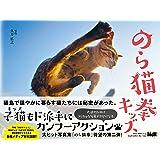 のら猫拳キッズ / Ninja Kittens