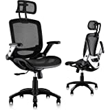 Gabrylly Ergonomic Mesh Office Chair, High Back Desk Chair - Adjustable Headrest with Flip-Up Arms, Tilt Function, Lumbar Sup