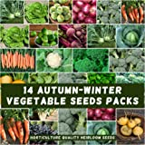 Mixed Autumn Winter 1500+ Vegetable Seeds Heirloom 14PKS 14 Type Cold Temperate