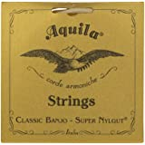 Aquila New Nylgut AQ-1B Banjo Medium Tension DBGDG-Set of 5 (4th Red Series String)