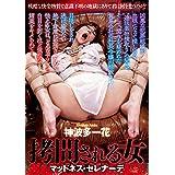 拷問される女 マッドネス・セレナーデ 神波多一花 BabyEntertainment [DVD]