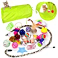 Youngever 24 Cat Toys Kitten Toys Assortments, 2 Way Tunnel, Cat Feather Teaser - Wand Interactive Feather Toy Fluffy Mouse,
