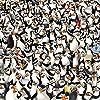 ディズニー - ザ・ペンギンズ from マダガスカル iPad壁紙 73098