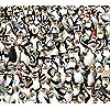 ディズニー - ザ・ペンギンズ from マダガスカル Android(960×854)待ち受け 75551