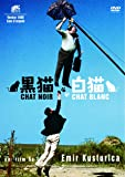 黒猫・白猫 [DVD]