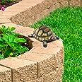 Pure Garden 50-LG1095 Turtle Statue-Resin Zen Animal Figurine for Outdoor Lawn Decor-for Flower Beds Fairy Gardens, Backyards