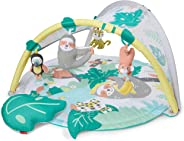 Skip Hop Tropical Paradise Activity Gym and Soother, Multicolour,