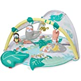 Skip Hop Tropical Paradise Activity Gym and Soother,
